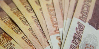 Овощеводы в Челябинской области получат новый вид субсидий