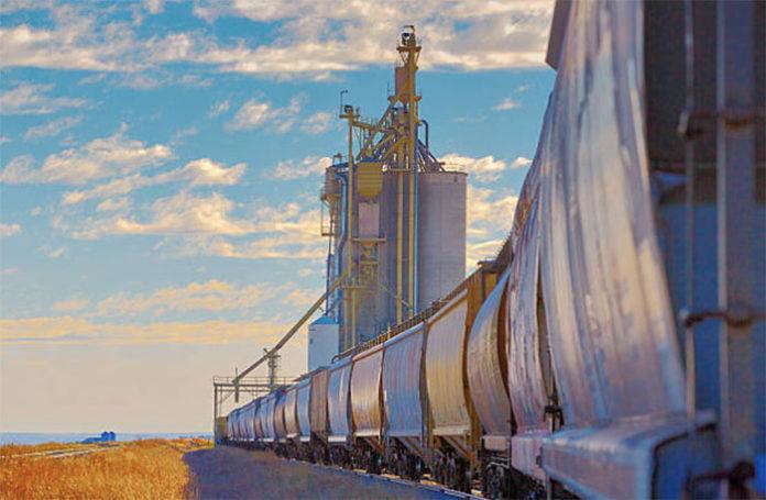 Показатели экспорт зерна из России все больше отстают от прошлогодних