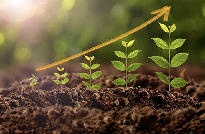 Повлияет ли изменение правил погектарной поддержки на посевную в Сибири