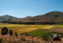Природа Мадагаскара под угрозой из-за незаконной добычи ресурсов Западом