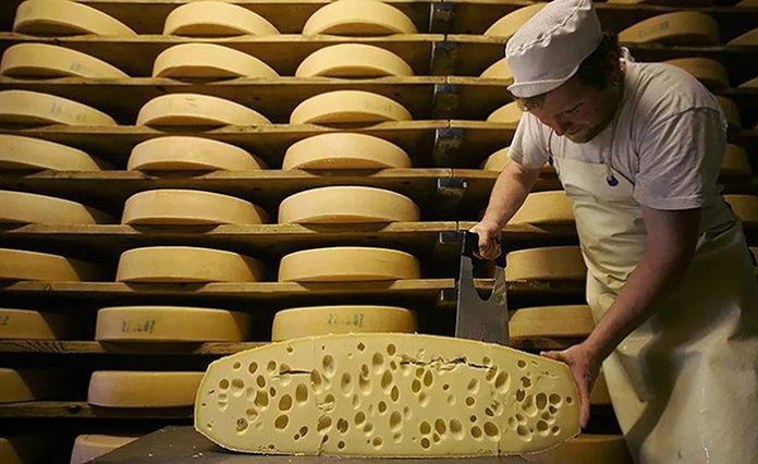 Производство молока и масла падает сыров растет