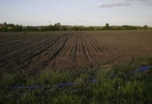 В Иркутской области увеличат посевные площади