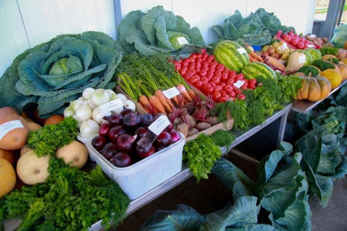 В Липецкой области открываются кооперативные рынки