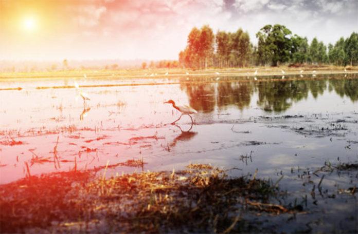 В Зауралье после ремонта дороги затопило участки фермеров