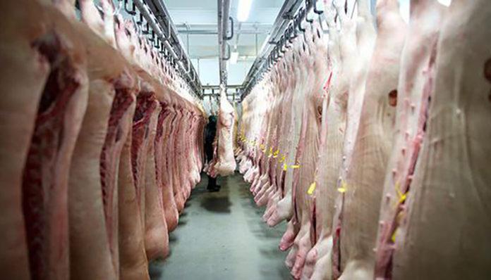 Вирус АЧС обнаружен в 30-50% китайских свиноферм