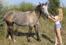 Фермер-красавица из Волгоградской области поделилась своей историей успеха