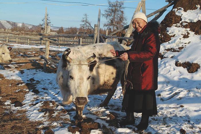 Photo of Говядина в собственном соку