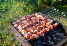 К лету петербуржцам могут разрешить жарить шашлыки в парках