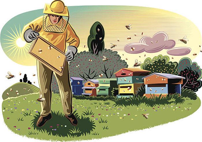 Многие пчеловоды для повышения медосбора пчелами возят их в передвижных павильонах непосредственно к нектароносным угодьям