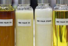 Пальмовое масло пойдет в сегмент биотоплива а в пищевом секторе его будут замещать другие