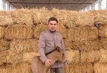 Президент Туркменистана приказал цифровизировать сельское хозяйство