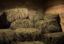Технология заготовки сена
