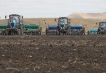 Ущерб от гибели озимых в Башкирии оценили в 6 млрд рублей