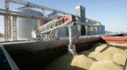 В России создан новый союз экспортеров зерна