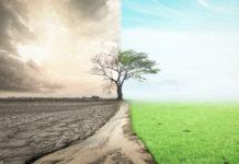 В федеральной земле Баден-Вюртемберг (Германия) увеличилась доля земель, обрабатываемых согласно требованиям экологии
