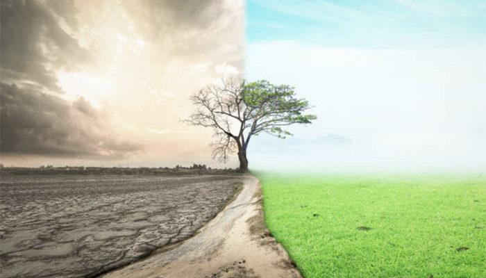 В Германии увеличилась доля органических земель 🇩🇪
