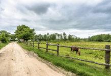 Законопроект о развитии туризма на сельских территориях одобрен Правительством