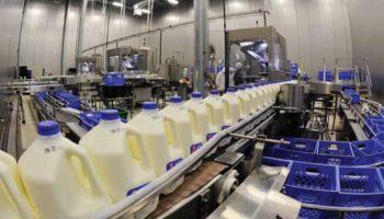 Импорт молочной продукции вырос на 40% в первые месяцы 2019 года