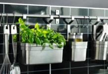 8 растений которые прекрасно живут на кухне