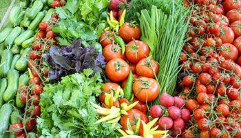 Четверть алтайской агропродукции экспортируется через другие регионы