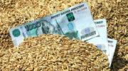 Эксперты дали прогноз на урожай 2019 года в России