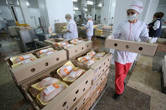 Photo of Эксперты предупредили об опасности мытья курицы перед приготовлением