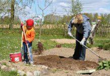 Главные заботы последнего месяца весны в саду и на огороде