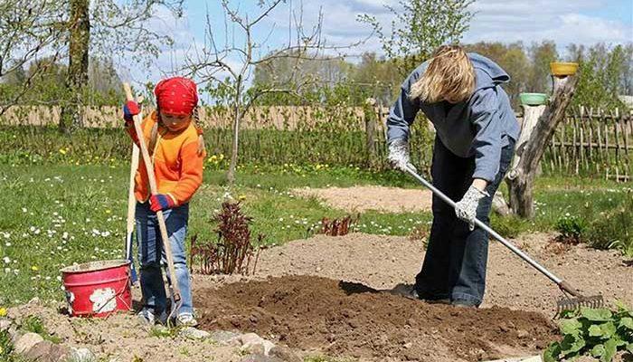 Что делать в саду и огороде в мае, вывоз на дачу и посадка рассады, борьба с вредителями