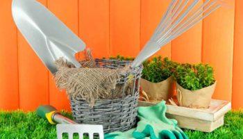 Календарь работ в мае – сад, огород, цветник, оранжерея