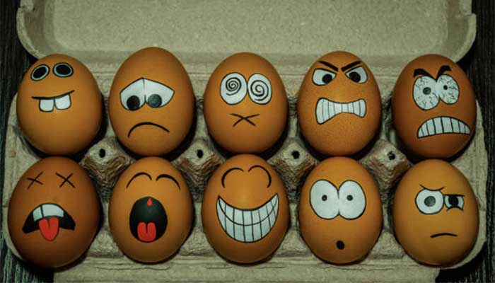 Кредитор намерен сделать банкротом крупнейшего производителя яиц в России