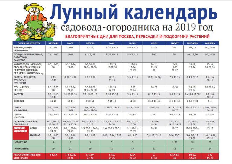 Календарь 2021 на лунный рака для