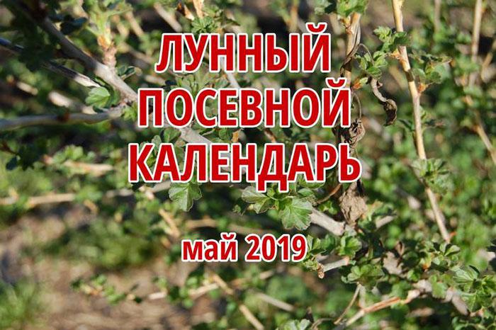Лунный календарь садовода, огородника и цветовода на май 2019 года будет полезен при работе на даче