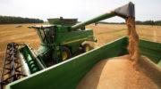 Минсельхоз прогнозирует урожай зерновых к 2035 году в 150 млн тонн