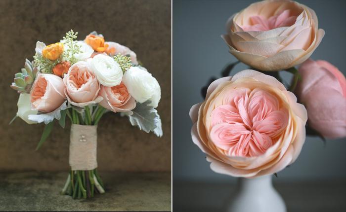Потрясающая роза Джульетты