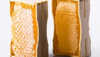 Производство сотового меда