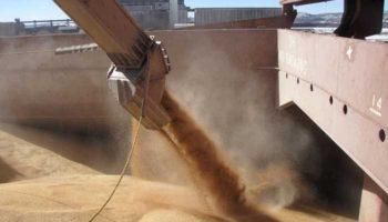 В апреле экспорт зерна сократился на 30%
