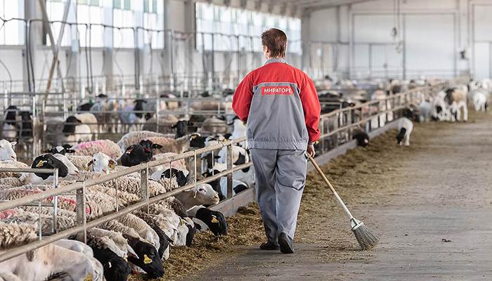 «Мираторг» стал крупнейшим владельцем сельхозугодий в РФ