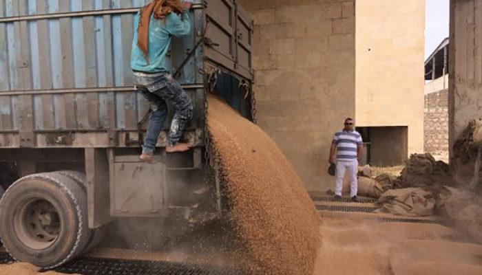 Дамаск организовал процесс оказания поддержки сирийским фермерам