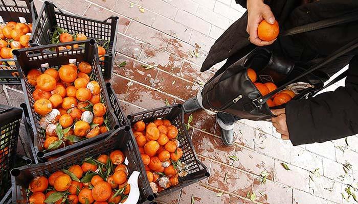 Как в европейских странах решают проблему реализации нераспроданных, но годных к употреблению продуктов