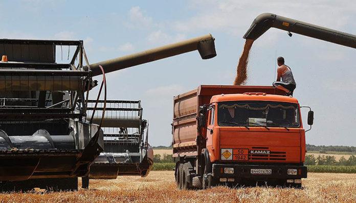 Китайская корпорация COFCO может купить 25% зернового терминала КСК