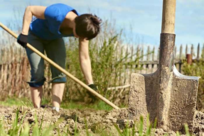 Минэконом предложил изымать у граждан землю за мусор и нескошенную траву