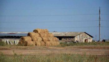 Оренбуржцев в село «заманят» ипотекой под 3% и льготным обучением