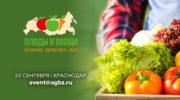 Инна Гольфанд, партнёр практики АПК компании «НЭО Центр», выступит на форуме «Плоды и овощи России: хранение, логистика, сбыт»
