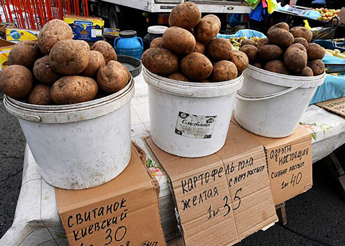 Кому можно продавать овощи с дачи?