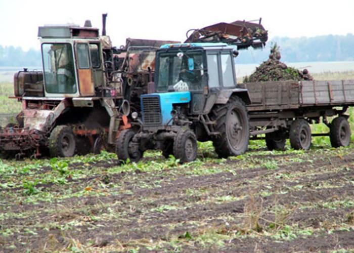 Минсельхоз до российских аграриев довели более половины федеральных субсидий
