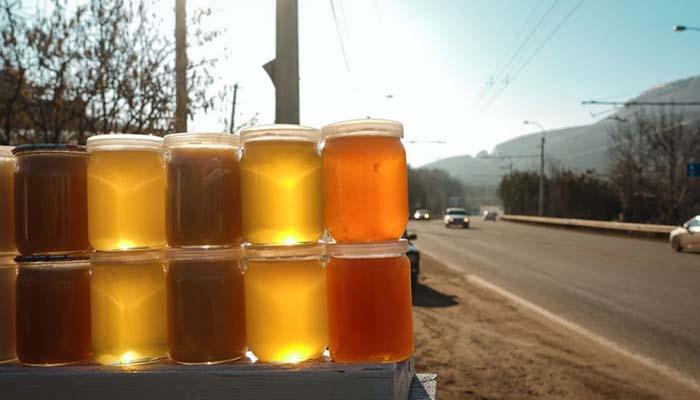 Мёд отравленных в Алтайском крае пчёл может попасть в продажу
