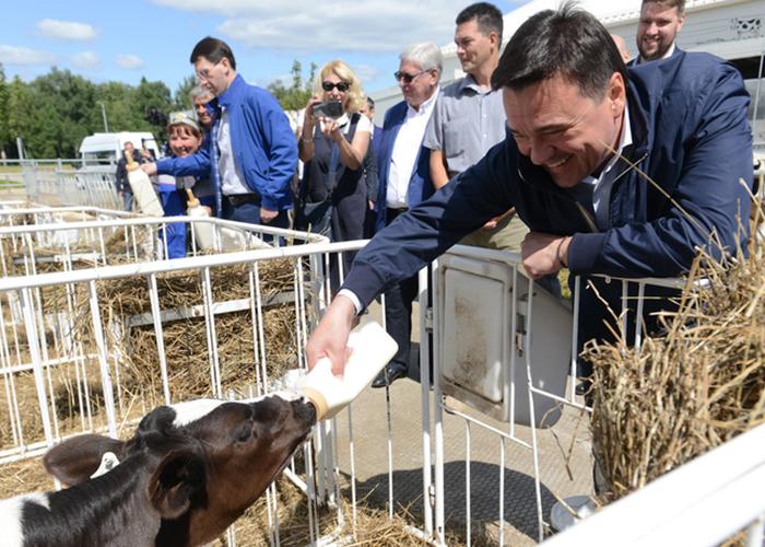 Новая технологичная ферма открылась в Волоколамском округе