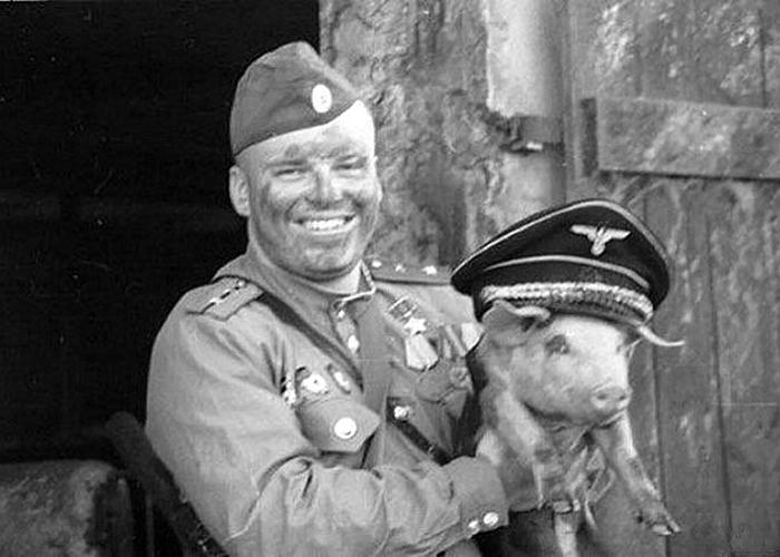 Произвол компании «Мираторг» и защита памяти о Великой Отечественной войне