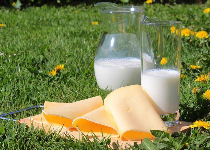 Роспотребнадзор опубликовал список производителей фальсифицированной молочной продукции
