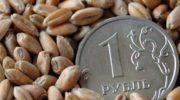 Российский зерновой рынок: падение цен продолжается во всех регионах